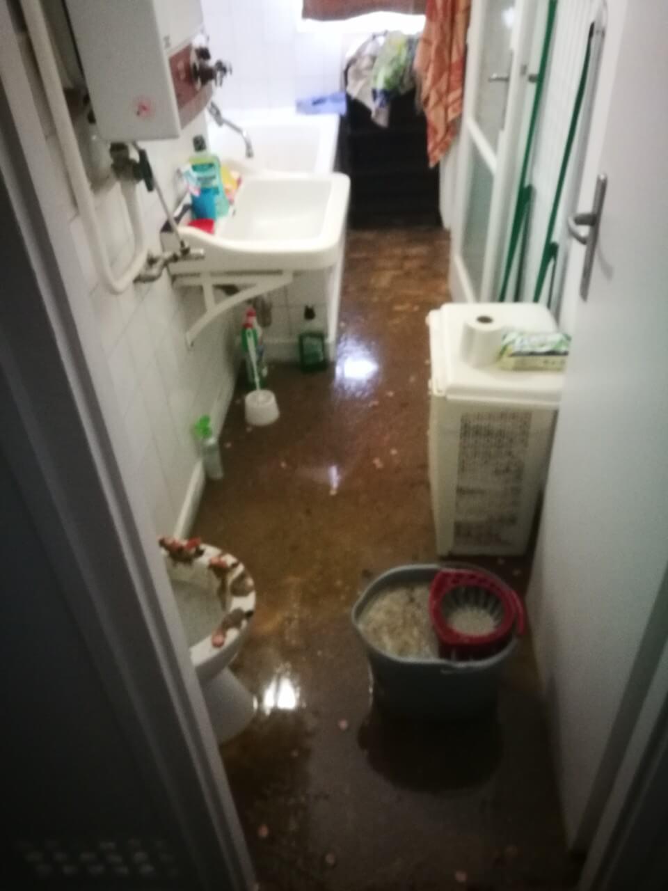 Bokáig a szennyvízben